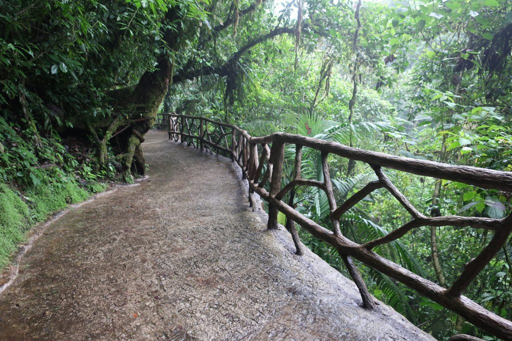 Mistico park