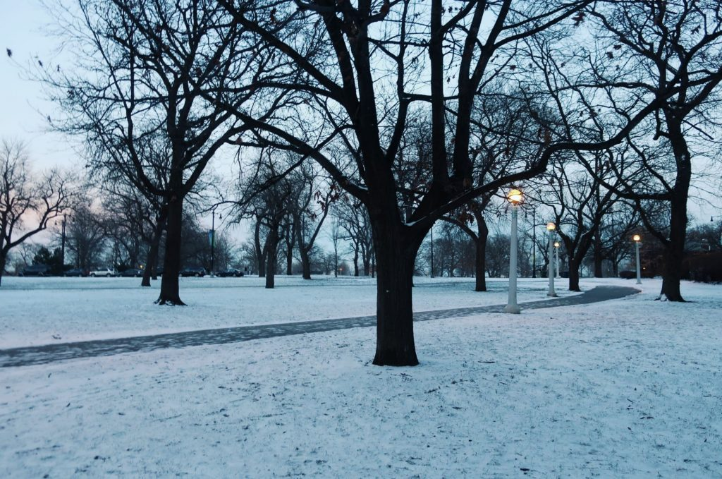 Lincoln Park, Chicago in winter