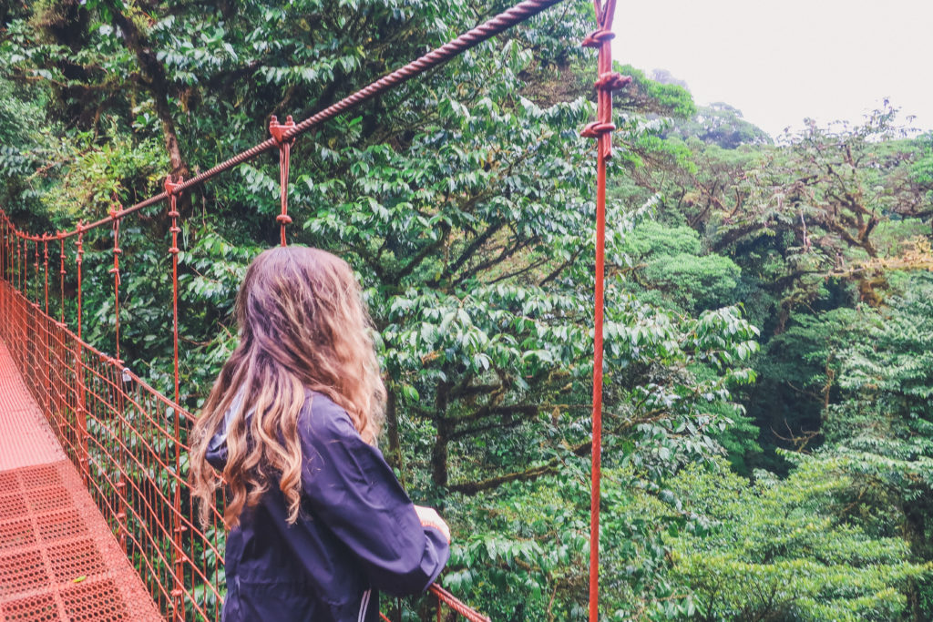 Arenal, suspension bridge views