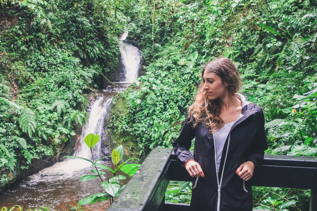 hanging out in the Monteverde Cloud Forest