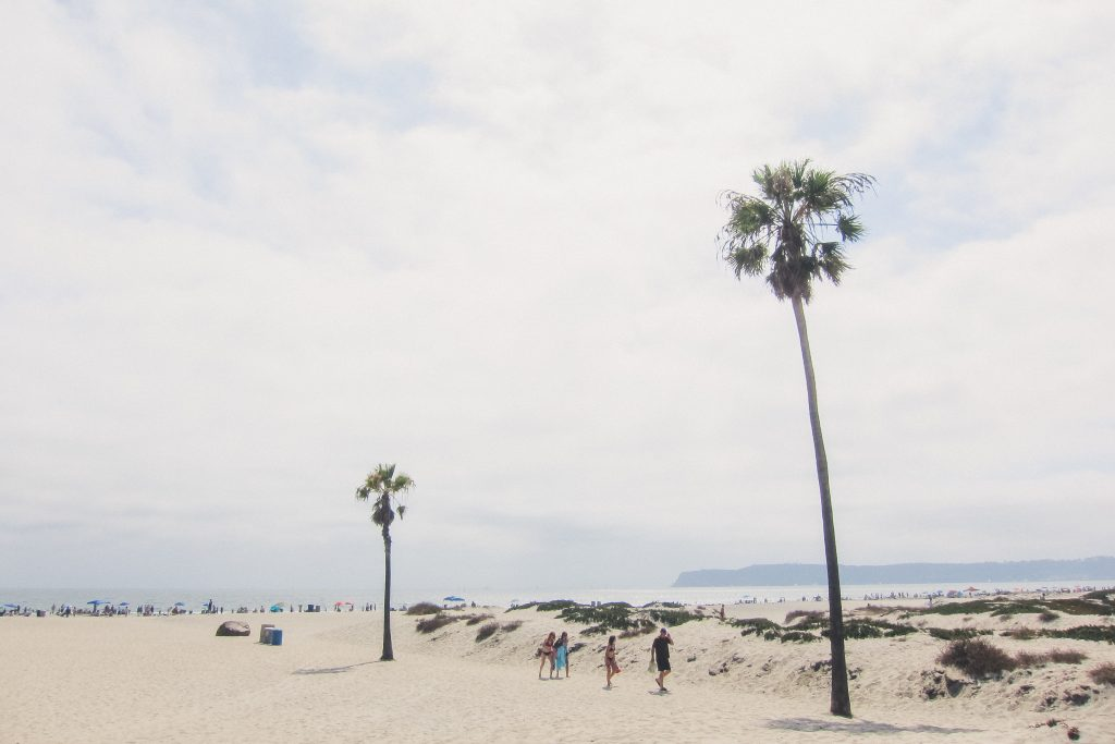 coronado beach california in san diego