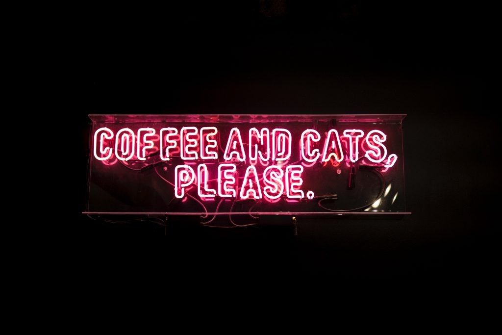 """coffee and cats please"" in neon"