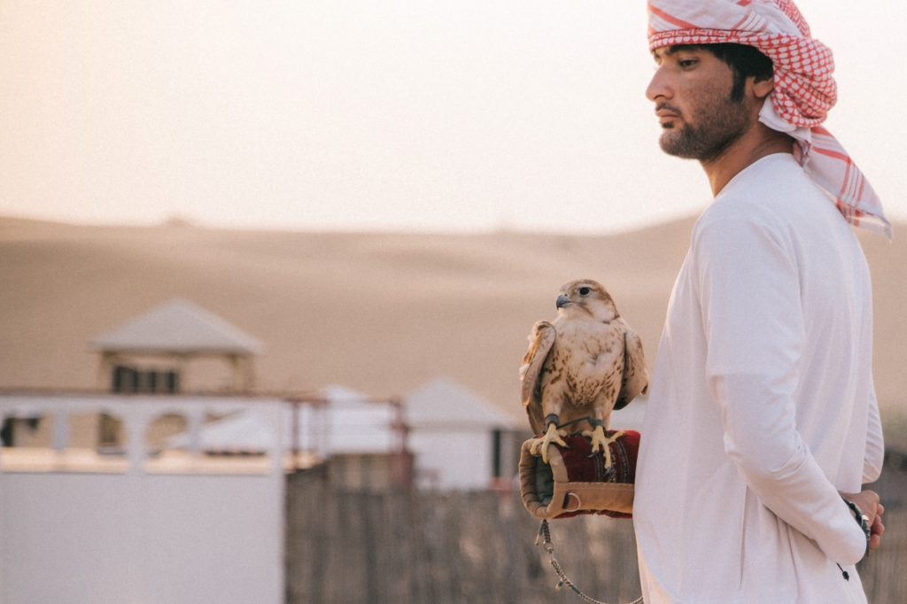 man wearing traditional Arabic dress holds falcon