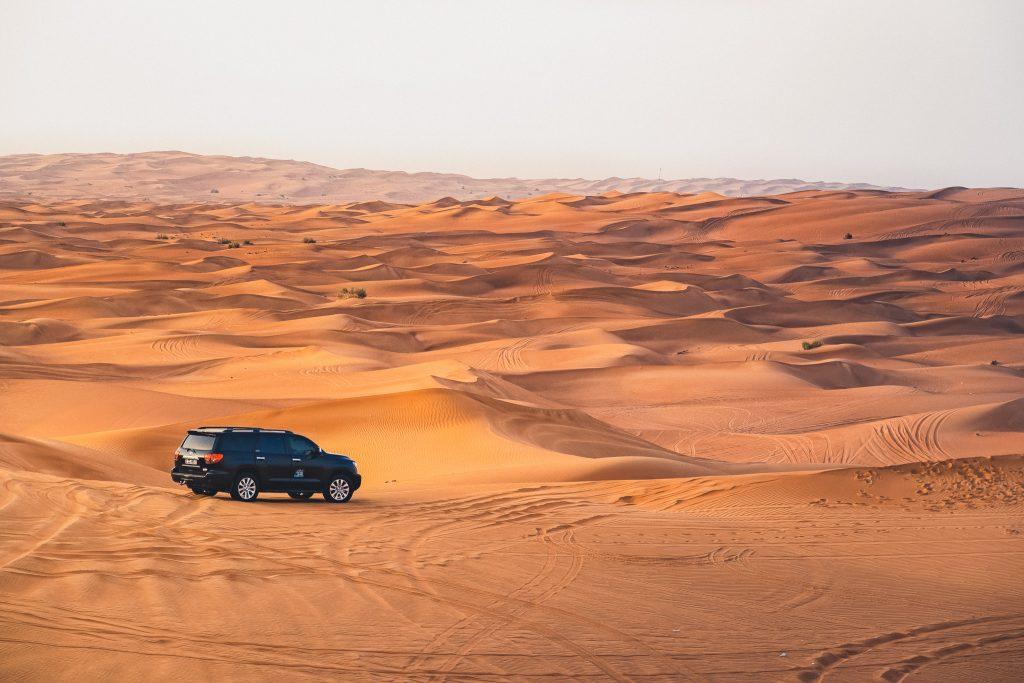 Dubai Fossil Dunes