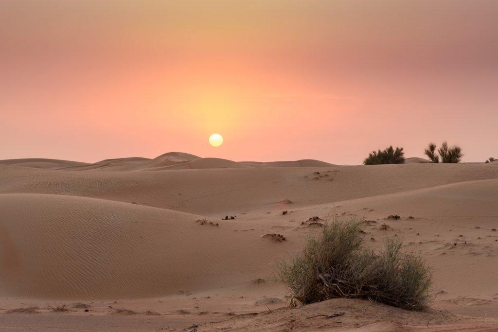 Dubai Desert