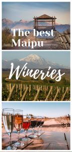 the Maipu Wineries pin