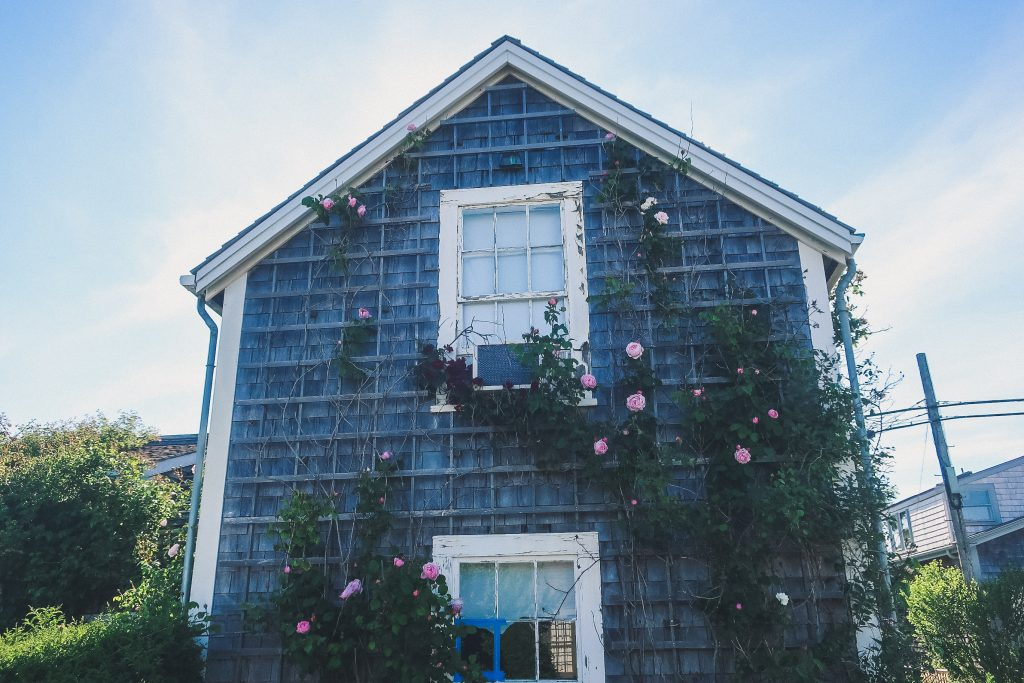 Nantucket cottage with roses