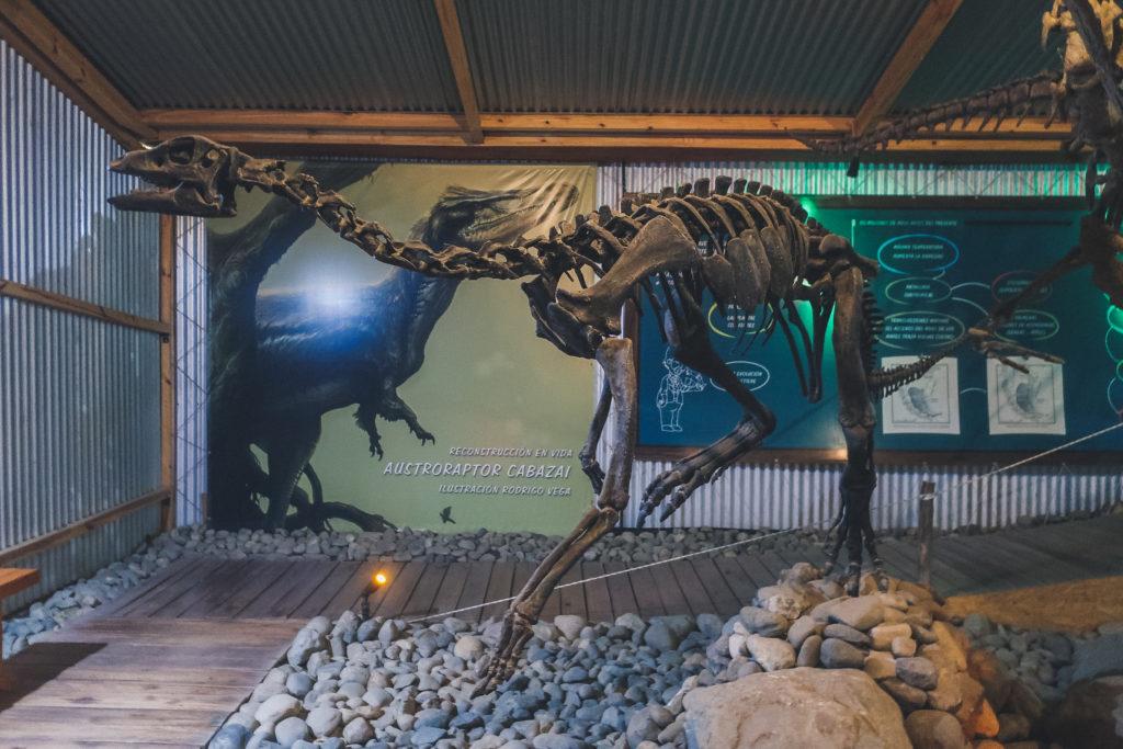 dinosaur skeleton in El Calafate's history museum