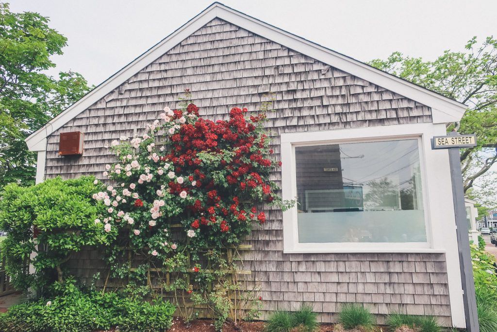 home in Nantucket, roses red and pink