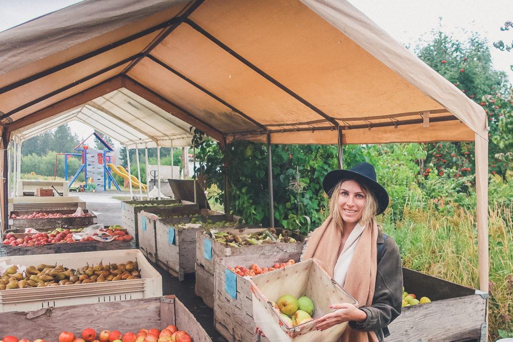 buying fresh apples in oregon's fruit loop
